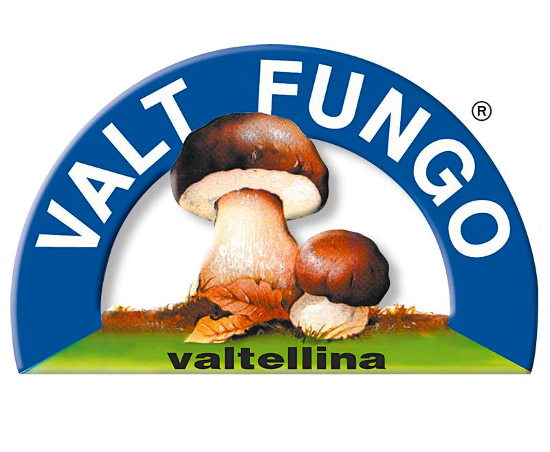 VALT FUNGO